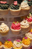Colourful Cupcakes — Stock Photo