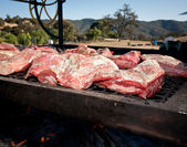 Barbecued Tri Tip — Stock Photo
