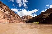 Colorado River in the Grand Canyon — Stock Photo