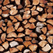 A pile of logs - Foto Stock