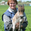 Stock Photo: Woman with foal pony