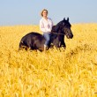 Beautiful woman rides a pretty horse in field - Stock Photo