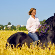 Beautiful smiling woman rides pretty horse in field - Stock Photo