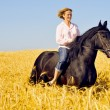 Beautiful smiling womrides pretty horse in field — Stock Photo #8883740
