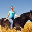 Beautiful gitl in field on horseback — Stock Photo #8883982