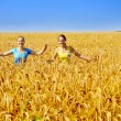 Two beautiful girls walk through golden field — Stock Photo #8884915