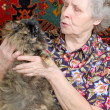Stock Photo: Grandmother tell tales with kitty