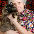 Stock Photo: Grandmother sitting with cat on her hands