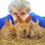 Elderly woman near rabbit — Stock Photo #8885593
