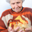 Old woman — Stock Photo #8885611