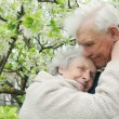Happy grandparents against a background of flowering garden — Stock Photo #8885989