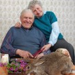 Grandmother and grand-dad laugh at a rabbit — Stock fotografie
