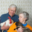 Royalty-Free Stock Photo: Grandfather with rooster and grandmother with pussy-cat