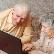 Old couple look to the laptop with active interest — Stok fotoğraf