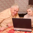 Old couple look to the laptop with active interest — Stock Photo
