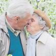 Happy couple old — Stock Photo