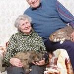 Happy elderly couple — Stock Photo #8886297