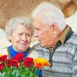 Pair elderly - Stockfoto