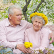 Old couple against a background of flowering garden — Foto Stock