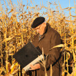 Old farmer in field — Stock Photo #8886427