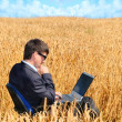 Foto Stock: Successful businessmworks in field on notebook