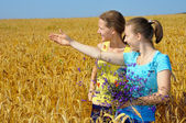 Two pretty girls in an excitement of sight on golden field — Stock Photo