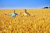 Duas lindas meninas percorrer campo dourado — Foto Stock