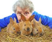 Ältere Frau in der Nähe von Kaninchen — Stockfoto