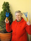 Cheerful granny with sunglasses grows bush — Stock Photo