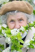 Granny smells white flowers — Stock Photo
