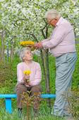 Feliz pareja de ancianos contra un fondo del jardín de flores con d — Foto de Stock