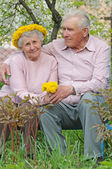 Happy old couple against a background of flowering garden with d — Stock Photo