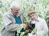 Happy old couple against a background of flowering garden with p — Stock Photo