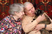 Seventy year old couple with cat — Stock Photo