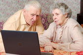 Old couple look to the laptop with active interest — Stockfoto