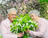 Happiness couple — Stock Photo