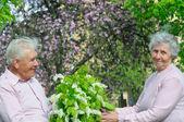 Pareja de felicidad con un ramo de flores — Foto de Stock