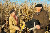 Happy farmers in field — Stock Photo