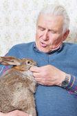 Man with bunny — Stock Photo