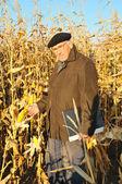 Pensive grandfather in field — Stock Photo