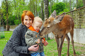 Mother and son pet a deer — Stockfoto