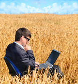Successful businessman works in field on notebook — Stockfoto