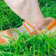 Summer shoes — Stock Photo