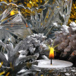 Fir-cones and christmas baubles of silvery color — Stock Photo #8914688