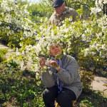 drandmother a dědeček brzy na jaře — Stock fotografie