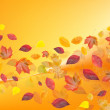 Stock Photo: Fall leafs on variegated background
