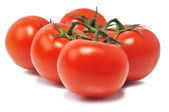 Five red tomatos — Stock Photo