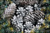 Coni di abete tra aghi verdi — Foto Stock