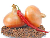 Two onions lie on condiment — Stock Photo