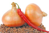 Onions lie on condiment — Stock Photo